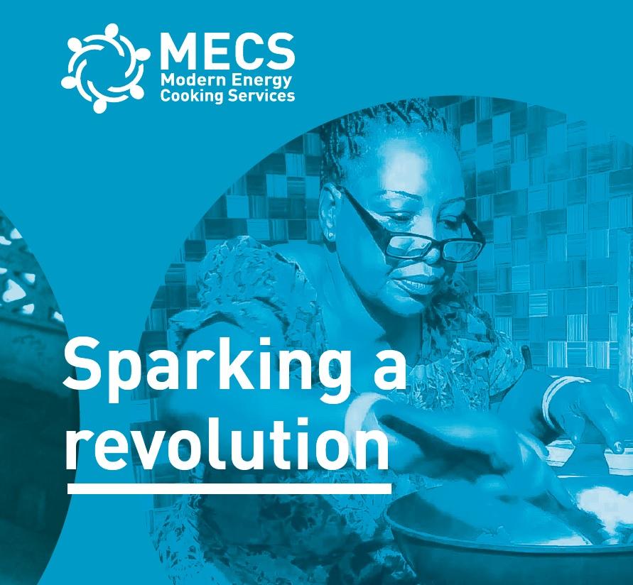 MECS overview brochure